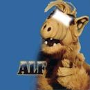 alf serie année 80