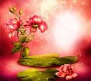 Duft der Rose #rp