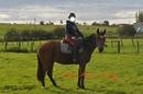 l'équitation + qu'un sport   UNE PASSION  !!