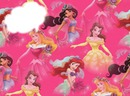 Princesses  Walt Disney