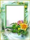 Cadre-roses