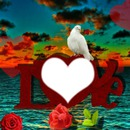 love-love