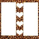 leopard coeur