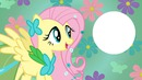 My Little Pony Equestrias Girls
