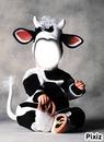 Bébé vache