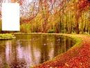Paysage en automne
