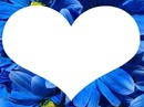 coeur fleur bleu 1