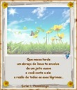 "Margaridas!! By""Maria Ribeiro"""