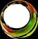 cadre ovale sur fond noir-1 photo