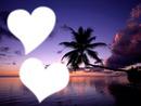 Palmier-Coeur