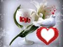 hermoso montaje de amor