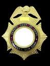 DEPUTY CHIEF OF DEPT FIRE DEPT NEW YORK