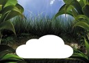 bebe nuage