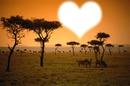 I LOVE AFRIQUE