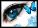 magnifique oeil