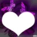 amour perdu