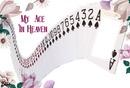 MY ACE IN HEAVEN