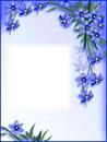 Cadre-fleurs bleues
