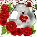 osito blanco con rosas