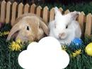 Pâques easter rabbit lapin nuage