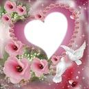Fleurs & roses
