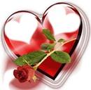 Rose coeur rouge scène