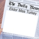 Elidor Miss Turkey Daily News