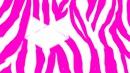 Fond zebre rose et blanc