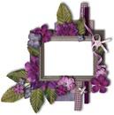 cadre aux fleurs violettes