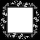 cadre noir fleur