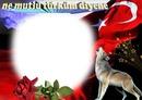 bozkurt türk bayrağı