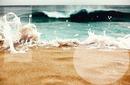 o meu amor pelo o mar