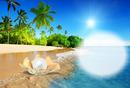 plage et perle
