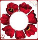 1 photo fleur coquelicot iena