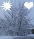 C'est beau la nature sous la neige