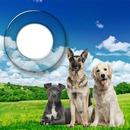 Dj CS Love Dogs 2