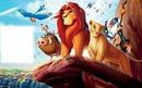 le roi lion 1.4