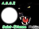 ASSE Saint-Etienne
