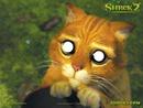 gato de shrek