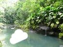 gwada paysage