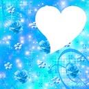 Roses blu