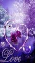 renewilly corazon lila