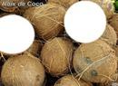 noix de coco pour les un peu noix de coco