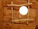 cadre de bois