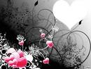 L'art de l'amoure