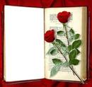 flores con libro