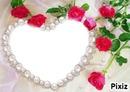 Coeur, Rose et Perle