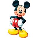 Mickey 2 photos