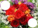 bouquet de roses panachée