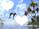 Coeurs - dauphins sautant hors de l'eau